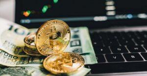 Bitcoins and Dollars